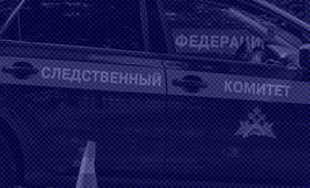 Троих нападавших на станции «Текстильщики» будут судить за хулиганство